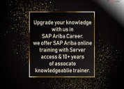Sap ariba online training courses|sapvits| what it