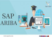 Sap ariba online training courses in pune, learn s