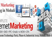 Best digital marketing training in mohali