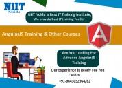 Angular js training in noida
