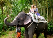 Best kerala travel and holiday packages
