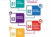 Sap sap simple logistics online training course in