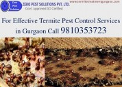 Dial +91-9810353723 | pest control gurgaon