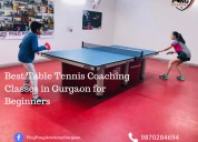 Table tennis academy near me