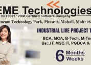Six Months/Weeks Industrial Training in Mohali