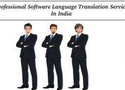 Professional software language translation service