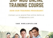 Sap mdg online courses in pune,hyderabad,bangalore