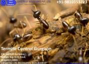 Call us +91-9810353723 | pest control in gurgaon