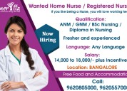 Wanted home nurse  registered nurse