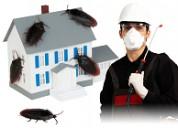 Dial +91-9810353723 | pest control in bawana