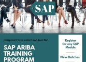 What is sap ariba_sap ariba overview: sapvits