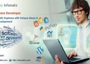 Bluez infomatic is a leading software developer in