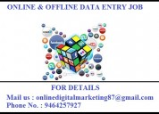 Online and offline both typing job at home