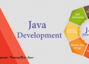 Best java training institute i