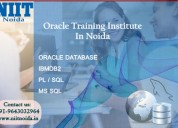 Oracle training institutes in noida, delhi