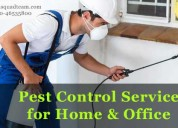 Highly successful pest control treatment services