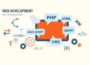 Top web development company in india