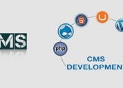 Get a cost-effective solution with the cms develop