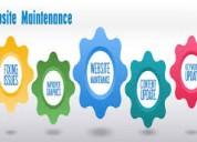 Cost effective web maintenance company in delhi-