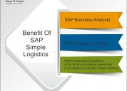 Is it good to go with sap simple logistics trainin