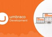 Umbraco development company