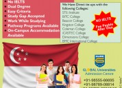 Singapore study & work