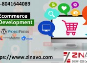 Affordable ecommerce web development services