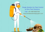 Affordable pest control gurgaon services