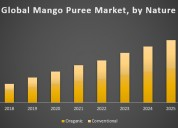 Global mango puree market