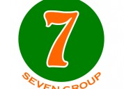 Seven group company