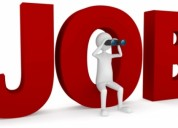 Find the jobs in noida as per the requirement at o