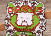 Dawgs baseball trading pins