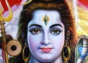 astrologer  astrologer lucky sharma +91 9815897896