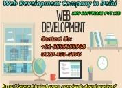Why to contact web development company in delhi