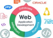 Reputed web application development company in del