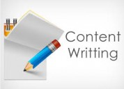 Content writing company in delhi by professional a