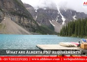 What are alberta pnp requirements?