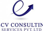 Chartered accountants company in delhi