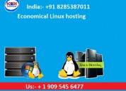 Economical linux hosting