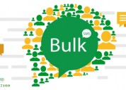 Bulk sms marketing service for business