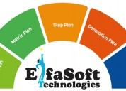 Binary mlm software at eifasoft technologies