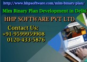 Our mlm binary plan development in delhi