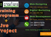 Best web designing digital marketing seo courses