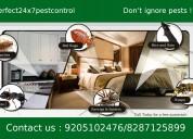 Termites control&cockroach control in delhi/noida