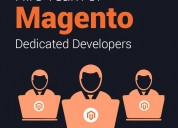 Hire professional magento developers