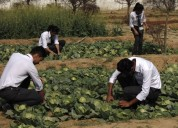 Best b.sc agriculture  college in uttrakhand