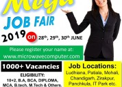 Mega job fair 2019 in khanna
