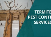Best termite pest control solution in bangalore