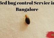 Bed bug control service in bangalore