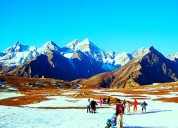 The eco himalayan resort manali tour package